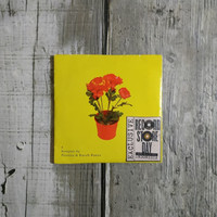 cd kaveh kanes - also you can get a bouquet by peonies
