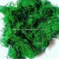 Rumput Kayu angin 20 gram bahan mahar rustic ring box