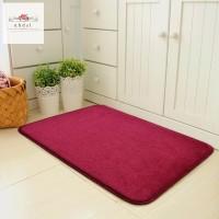Magic Non Slip Door Mat Dirts Trapper Indoor Super Absorbent Doormat