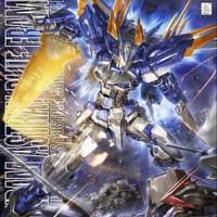 Hot Sale - Bandai MG Astray Blue Frame D