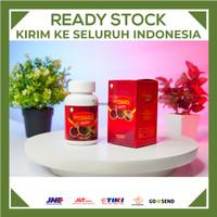 SARMUCARE Walatra Sarang Semut Herbal Diabetes 100% Original