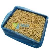 Kacang Almond Mentah Skinless Blue Diamond Kupas Tanpa Kulit 11,34kg