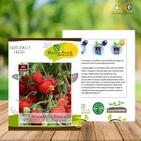 Benih-Bibit Strawberry jumbo Fresca Haira Seed