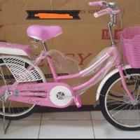 Sepeda anak mini 20 inch evergreen sepedamurah78