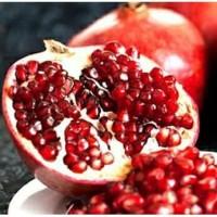 Bibit buah delima merah biji lunak red ruby pomegranate spanyol