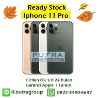 (DUAL SIM) iPhone 256GB / 256 11 Pro Gold Green Silver - Grey / Gray - DUAL NANO Gold