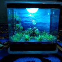 aquarium mini portable plus lampu dan mesin aerator