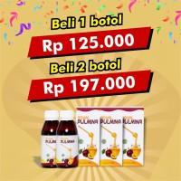 PROMO Madu Diet Buah Plum Royal Pulmina Herbal Pelangsing Alami Detox
