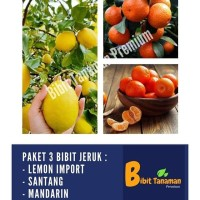 PAKET BIBIT JERUK SANTANG MADU, MANDARIN & LEMON IMPORT (B T PREMIUM)