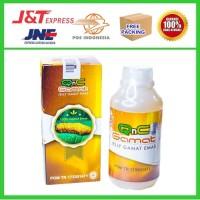 Obat Herbal Alami Untuk Paru - Paru Basah - QnC Jelly Gamat ASLI