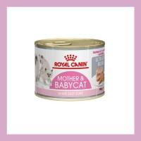 ROYAL CANIN Instinctive Mother & Baby Cat Starter Mousse 195gr - PROMO