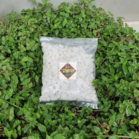batu hias tanaman aquarium aquascape batu itali 1 kg - putih susu