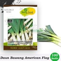 MURAH BENIH-BIBIT DAUN BAWANG AMERICAN FLAG LARGE (HAIRA SEED)