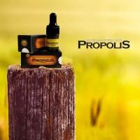 Propolis Nano Brazilian Harmoni Obat Herbal sakit gigi , luks sariawan
