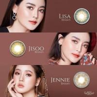 Original Softlens Dreamcolor Jennie, Lisa, Jisoo Brown