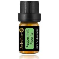 5ml Peppermint Piperita Essential Oil / Minyak Daun Mint 100% Murni