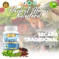 MYCOL - Obat Herbal Kolesterol - Menurunkan Kolesterol Tinggi