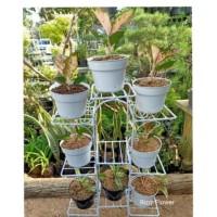 rak besi tanaman hias model kotak 9 susun