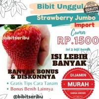Benih Strawberry Jumbo benih bibit sayuran tanaman Benih hidroponik