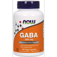 Now Foods GABA 500mg 100 Veg Capsules