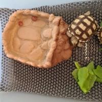 Waterdish Stone-M-Alami- tempat minum kura darat/ sulcata/reptil/torto