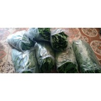 Sayur fumak Fresh-kumek-sayur untuk tortoise sulcata pardalis iguana
