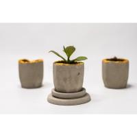 Pot Bunga / Pot kaktus / Pot tanaman / Pot kecil / hexcy - natural