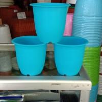 Pot Bunga NKT Kaktus 12 warna biru