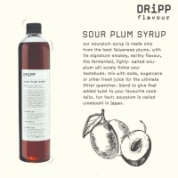 Dripp Sour Plum Syrup - Sirup Rasa Plum