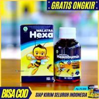 Walatra HEXABUMIN Asli - Madu Murni Plus Albumin Vitamin Penambah