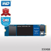 WD Blue SN550 SSD Internal 250GB M.2 NVMe 2280