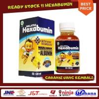 Walatra Hexabumin Madu Anak Plus Albumin - Aman - Halal - BPOM RI