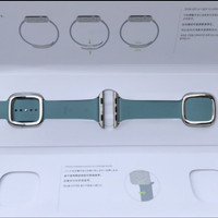 ORIGINAL tali Apple watch strap Modern buckle series 38mm / 40
