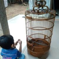 Sangkar Burung Branjangan Kayu Jati Terbaru