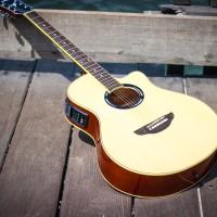 Gitar akustik elektrik apx500ii bonus tas+senarfender+pick