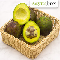 Avocado / Alpukat Mentega - 1 kg (Sayurbox)