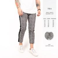 Celana Panjang Pria / Celana Abu Tua Kotak - Kotak List / Ankle Pants