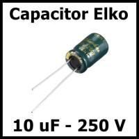 Kapasitor Elektrolit Elco Elko 10uF 250V 10 uF 250 Volt V