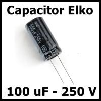 Kapasitor Elektrolit Elco Elko 100uF 250V 100 uF 250 Volt V