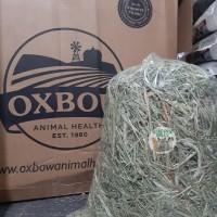 OXBOW Timothy hay Repack 1kg