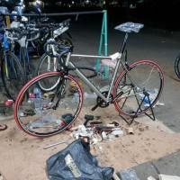 Sepeda Balap Titanium Fuji Campagnolo Murah Azizsadewa