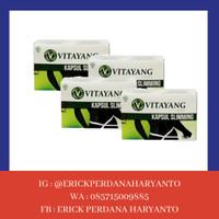 PAKET BELANJA (SPESIAL) 4 Box Vitayang Slimming Capsule