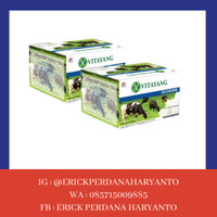 PAKET BELANJA (HEMAT) 2 Box Vitayang Susu SKim Bubuk