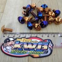 Baut Probolt Payung M6x15 ( baut drat 10 panjang 1,5 cm )