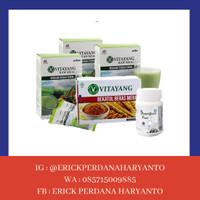 PAKET SIP 3 Box Vitayang Raw Meal + 1 Box Bekatul + 1 Btl SGF 150 tab