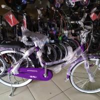 "Sepeda Mini Evergreen 24"" Keranjang Besi"