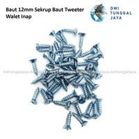 Sekrup Skrup Mur Tweeter Walet Kayu 12 mm Kepala Plus Tajam
