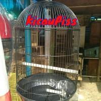 Kandang burung besi ukuran jumbo