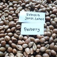 Green Bean Peaberry Robusta Jarai (kopi lanang)