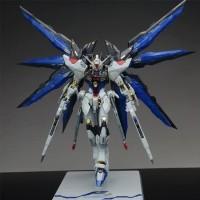 Strike Freedom MG 1/100 Gundam Daban